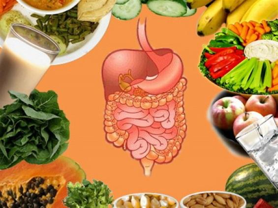 digestive-ehalth